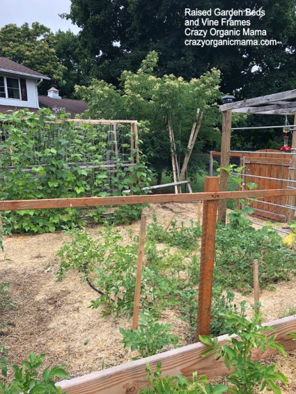 Photo of Raised garden beds and vine frames with Crazy Organic Mama