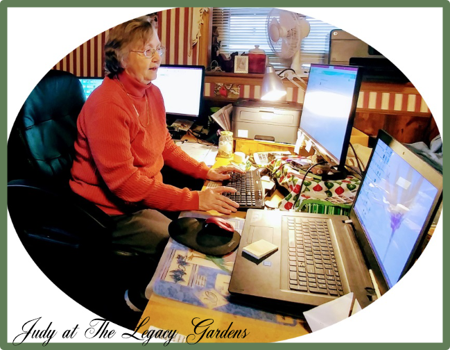 Photo of Judy at computer desk