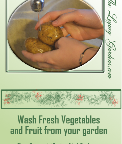 Wash fresh vegetables and fruit before eating