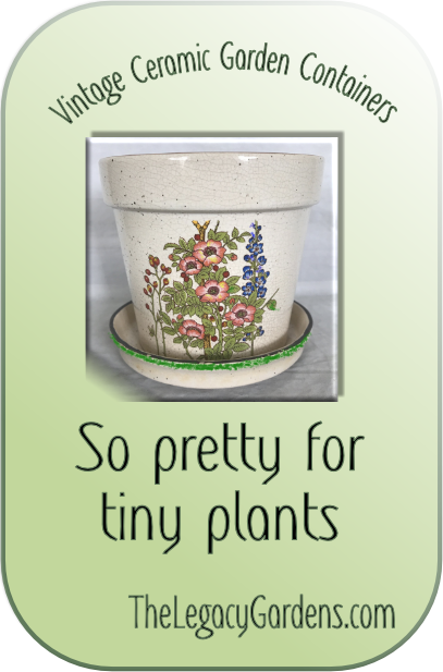 Graphic image featuring vintage ceramic garden containers.
