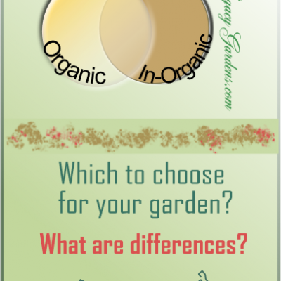 A Few Thoughts About  Organic and In-Organic