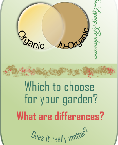 graphic about organic and in-organic practices discussed in post