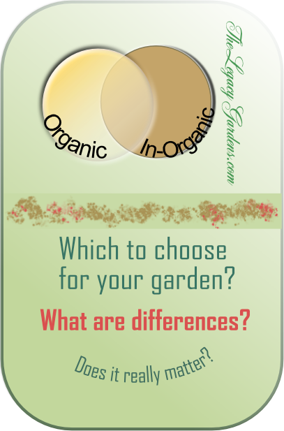 Graphic about organic or in-organic choices