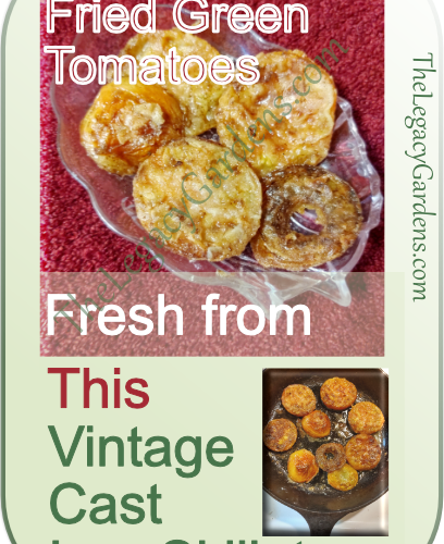 serving of fried green tomatoess