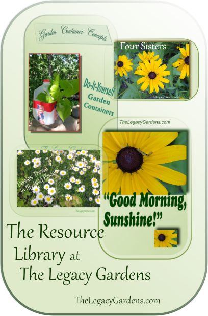 Collage of images and information found in the resource library which is available 24/7 to subscribers who have the password.