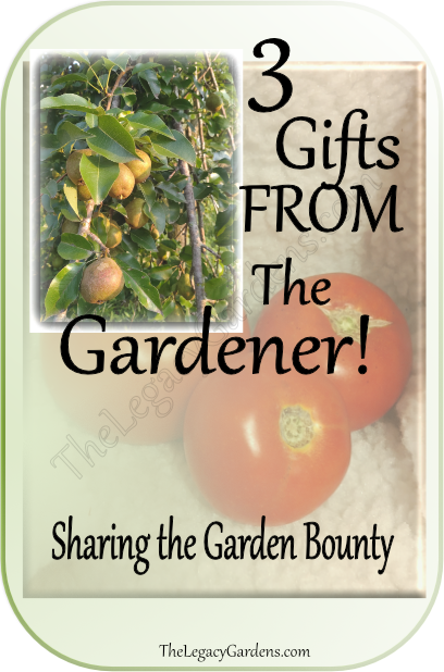 image of pears and tomatoes representing produce gifts to give from your garden.